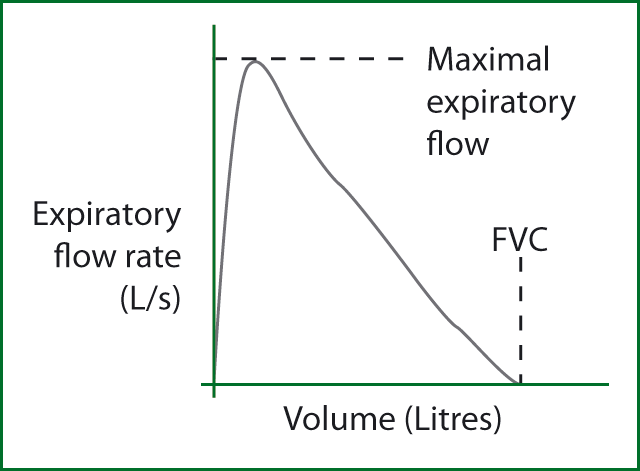 Normal Flow Curve Image